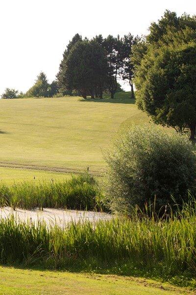 Golf lernen an einem Tag